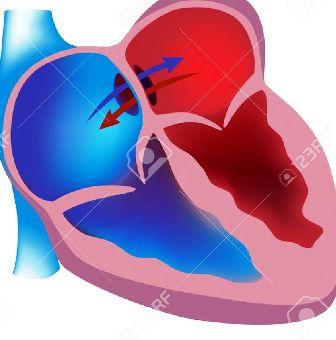 DECISÃO: Cardiopatia grave afasta incidência do imposto de renda sobre proventos de aposentadoria